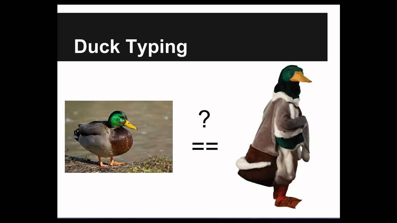 Khái niệm Duck typing trong Ruby